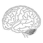 En hypnose session i skaber adgang til hele hjernen