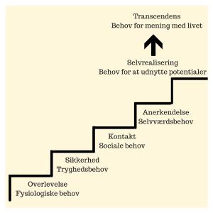 En skematisk oversigt over maslows behovspyramide